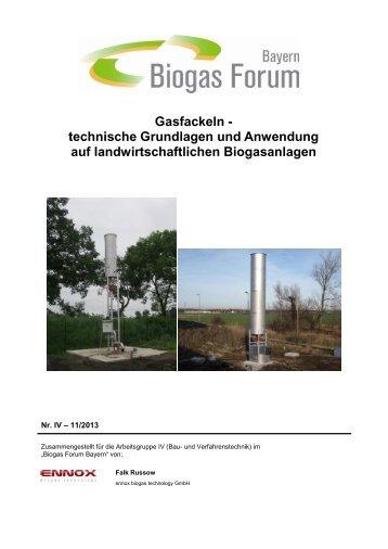 Gasfackeln - technische Grundlagen und Anwendung auf ...