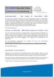 Newsletter 08-2013.pdf - Stadt Bitterfeld-Wolfen
