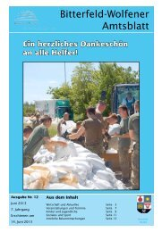 Amtsblatt 12-13 erschienen am 14.06.2013.pdf - Stadt Bitterfeld ...
