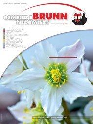 Gemeindezeitung 3/2013 - Brunn am Gebirge