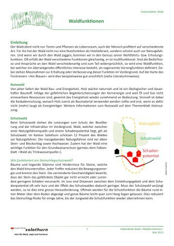 Waldfunktionen - BWSo