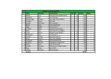 Auswertung - PDF - beim Champions Team