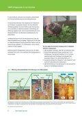 Düngung im Gartenbau - COMPO EXPERT - Seite 4