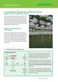 Düngung im Gartenbau - COMPO EXPERT - Seite 7