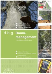 d.b.g. Baum- - Datenbankgesellschaft mbH