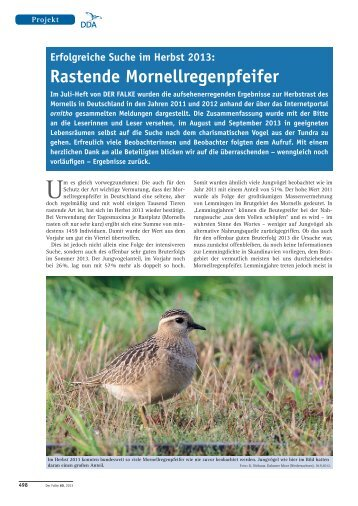 2013_12 (Dezember) - Dachverband Deutscher Avifaunisten