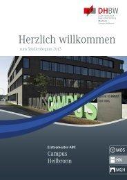 ESB_HN_130828.pdf (3,81 MB) - DHBW Mosbach