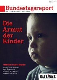 Bundestagsreport - Die Linke. Lausitz
