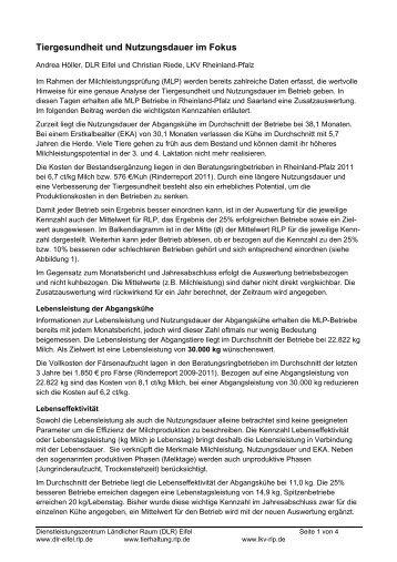 Tiergesundheit und Nutzungsdauer im Focus (2 - DLR - in ...