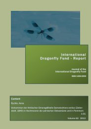 International Dragonfly Fund - Report