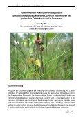 International Dragonfly Fund - Report - Seite 3