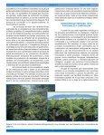 La Biodiversidad Y El Funcionamiento De Los Ecosistemas - Page 6
