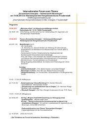 Internationales Forum zum Thema - Exportinitiative Erneuerbare ...