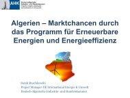 PDF: 991,7 KB - Exportinitiative Erneuerbare Energien
