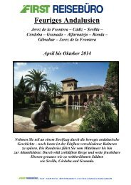 Feuriges Andalusien