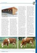 Fleckviehwelt 135 - Besamungsstation München-Grub e.V. - Seite 7