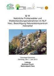 G11 - Deutscher Forstverein