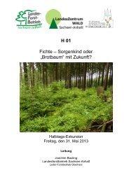 H01 - Deutscher Forstverein