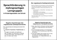 Die Pluralbildung im Deutschen