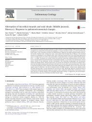 Alternation of microbial mounds and ooid shoals (Middle Jurasssic ...