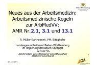Bittighofer: Neue arbeitsmedizinische Richtlinien (PDF; 446 KB)
