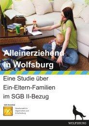 Alleinerziehend in Wolfsburg - Eine Studie über Ein ... - GOE Bielefeld