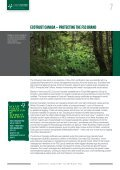 fsc-certified forest management that customers expect - Greenpeace - Page 7