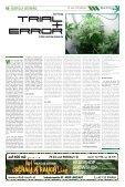 Januar 2014 - Hanf Journal - Page 6