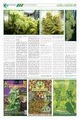 Januar 2014 - Hanf Journal - Page 7