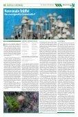 Bedingt glaubwürdig - Hanfjournal - Page 4