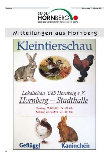 Amtliches_Nachrichtenblatt_Hornberg_Nr. 41_vom 10.10.2013