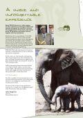 Kenya Travel Guide & Manual - International Luxury Travel Market - Page 7
