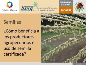 Semillas - snics - Sagarpa