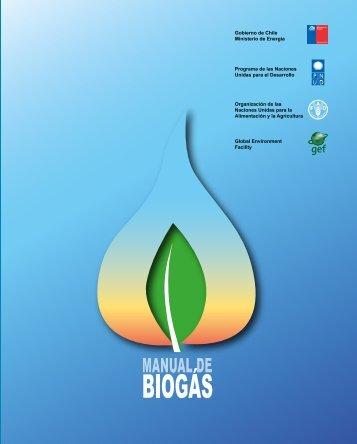 Manual de Biogás - SNV