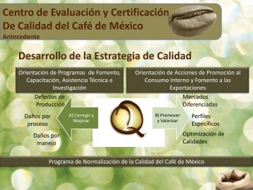 Proceso para certificar un lote Q.pdf - InfoRural.com.mx