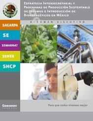 Estrategia Intersecretarial y Programas de ... - InfoRural.com.mx