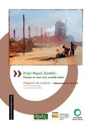 Projet Mopani (Zambie) : l'Europe au cœur d'un ... - MultiWatch