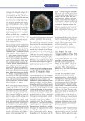The Search for the Companion Star of Tycho Brahe's 1572 Supernova - Page 2