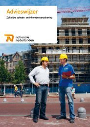 Dienstverleningsdocument Nationale-Nederlanden (PDF)