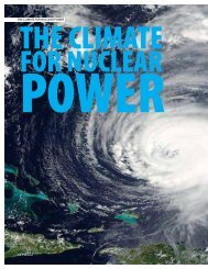 Ingenia 23 The Climate For Nuclear Power