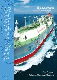 Salwico LNG - Consilium