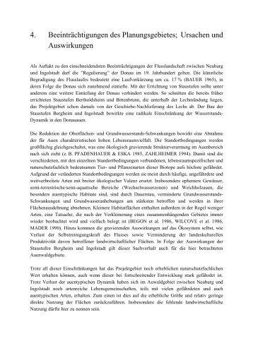 Beeinträchtigungen (99,4 KB) - Ingolstadt