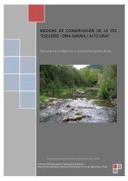 Alto Oria. Documento 2. Objetivos y actuaciones particulares (pdf ...