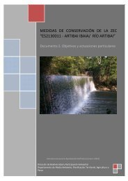 Río Artibai. Documento 2. Objetivos y actuaciones particulares