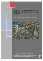 Ría de Oria. Documento 2. Objetivos y actuaciones particulares
