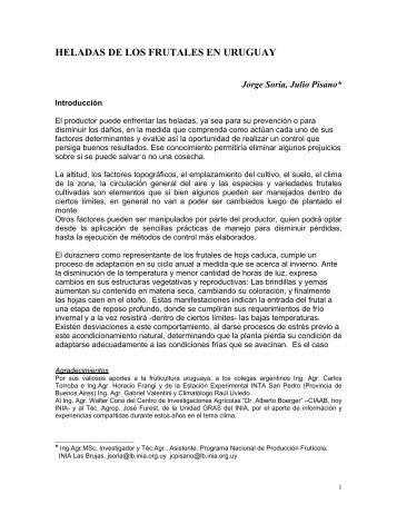 Acceda a la publicación en formato pdf (350 kb). - Inia