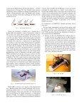 Teaching BOTBALL and researching DISBOTICS - InnoC - Page 4