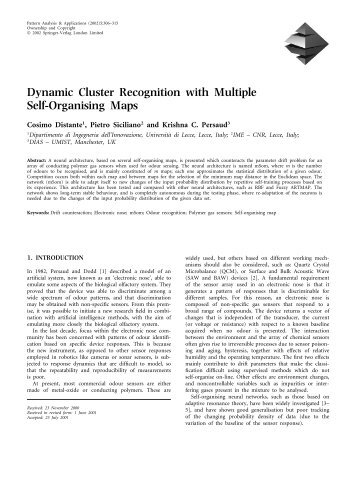 Dynamic Cluster Recognition with Multiple Self-Organising Maps