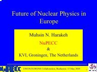 1. - Institute of Nuclear and Particle Physics
