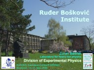 Ruđer Bošković Institute - Institute of Nuclear and Particle Physics